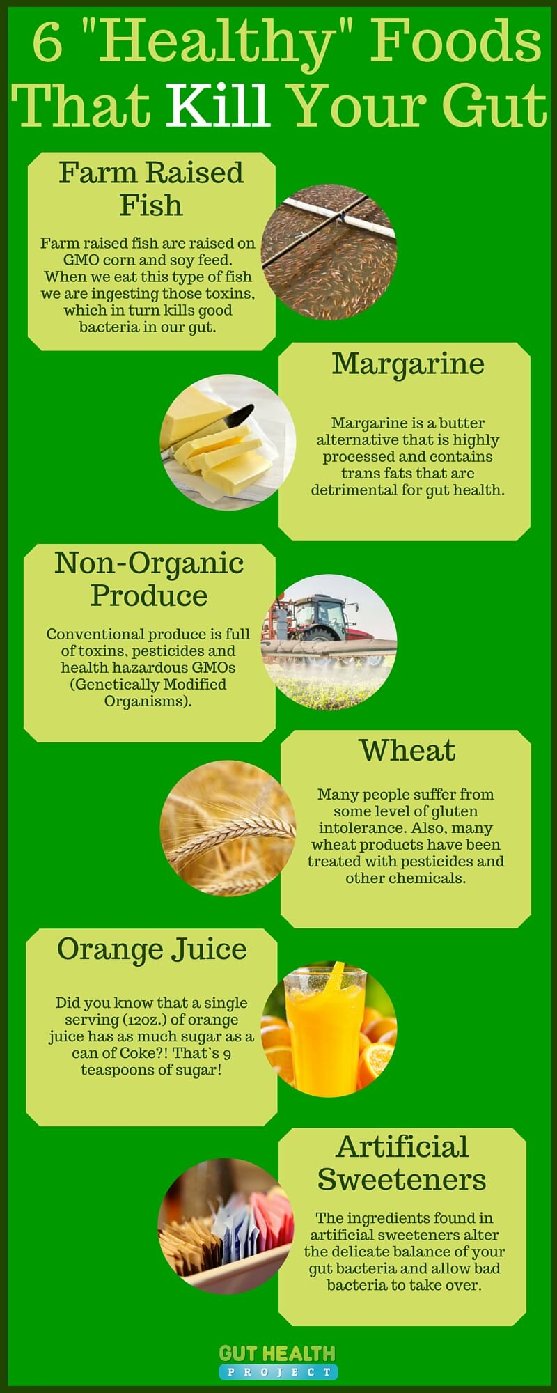 Healthy Foods For Your Gut