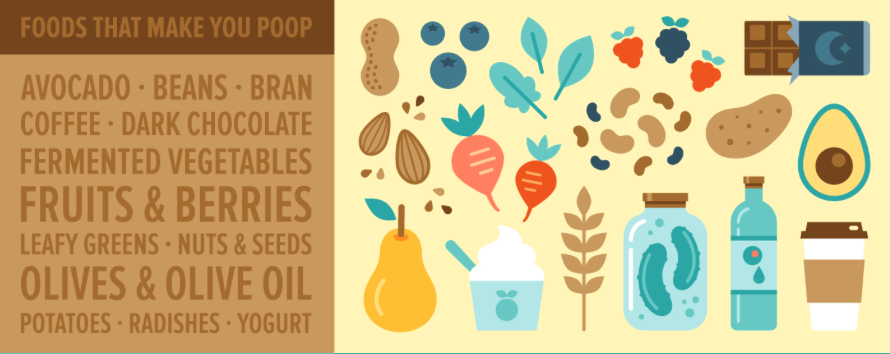 Foods That Make You Gassy And Poop